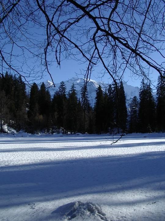 Le Lac Vert, à Passy (cliché Bernard Théry, janvier 2009)