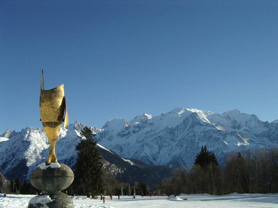 Le Mont-Blanc vu de Plaine-Joux, à Passy (cliché Bernard Théry, janvier 2009)