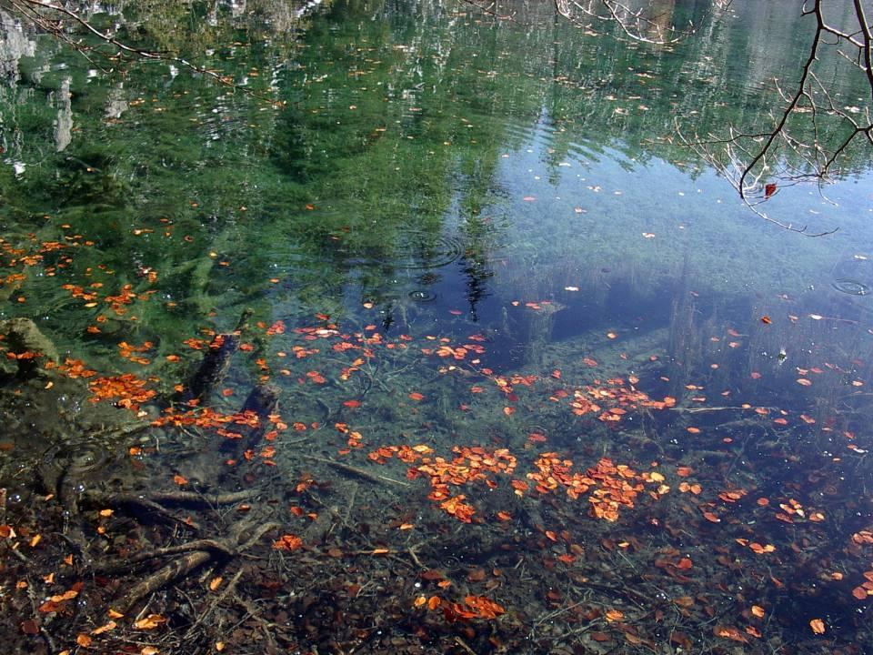 L'automne à Passy, le Lac Vert (cliché Bernard Théry, 2012)