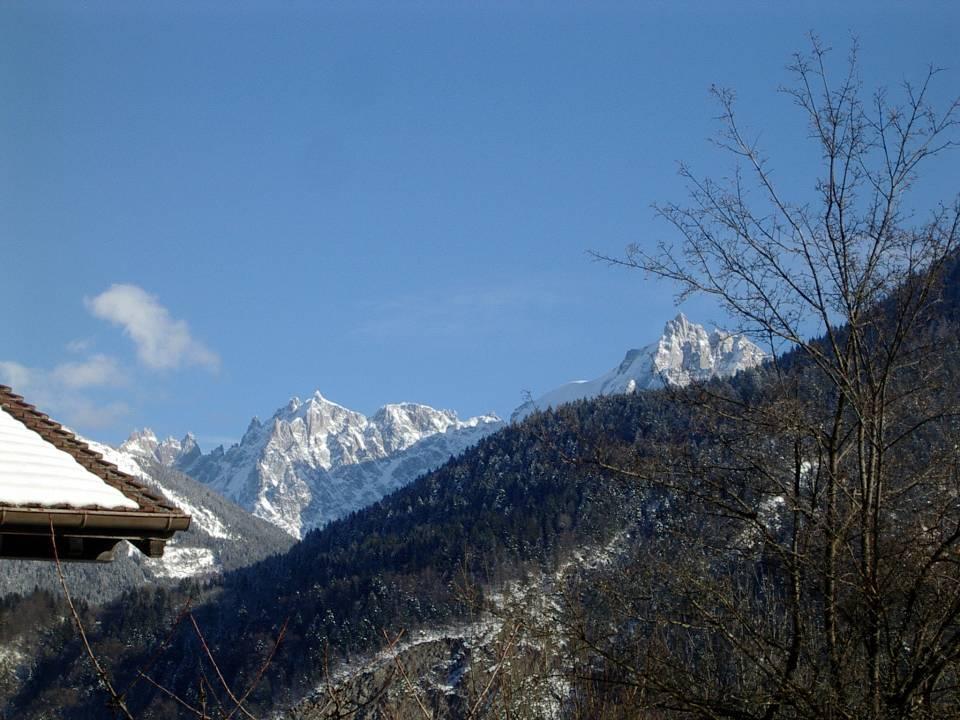 Les Aiguilles de Chamonix, vues du Perrey, à Passy (cliché Bernard Théry, janvier 2013)