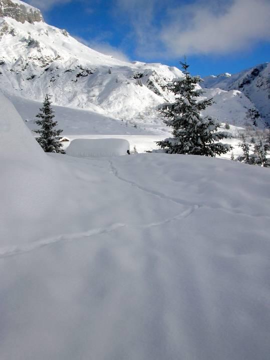 L'hiver aux Ayères, à Passy (cliché Elizabeth Ormyron, janvier 2013)