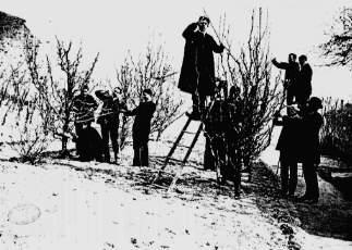 Elèves de l'école normale en cours d'apprentissage (Document tiré du site lycees.ac-rouen.fr )