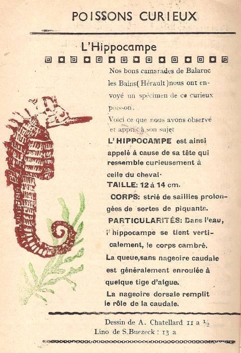 """L'hippocampe, journal scolaire de Passy  """"Face au Mont-Blanc"""", décembre 1948, p. 4"""