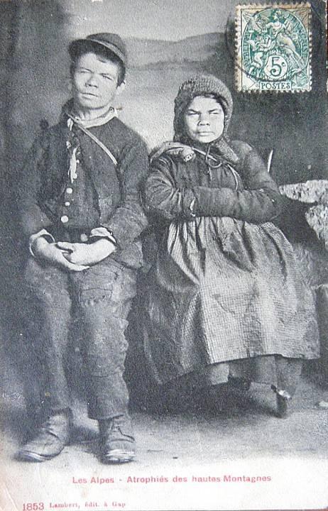 Les Alpes : Atrophiés des hautes Montagnes 1883 (Source Internet)