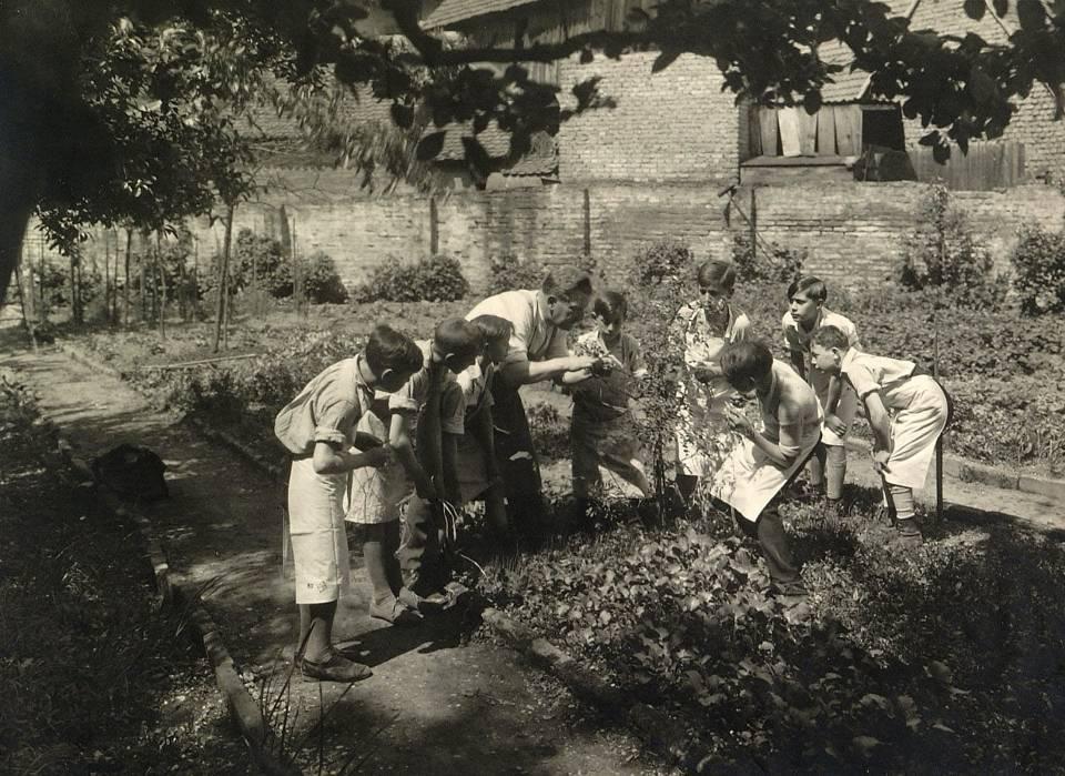 Jardin scolaire (doc. CRDP de Strasbourg)