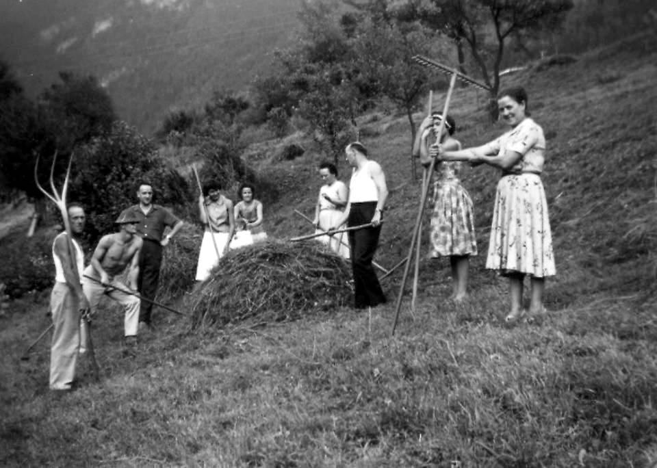 Les valamonts, petites meules de foin, qui évitent au fourrage d'être abîmé sur le champ, avant la rentrée en grange. Collection : Gérard Buttoudin (P. Dupraz, Traditions et évolution de Passy, p. 32)