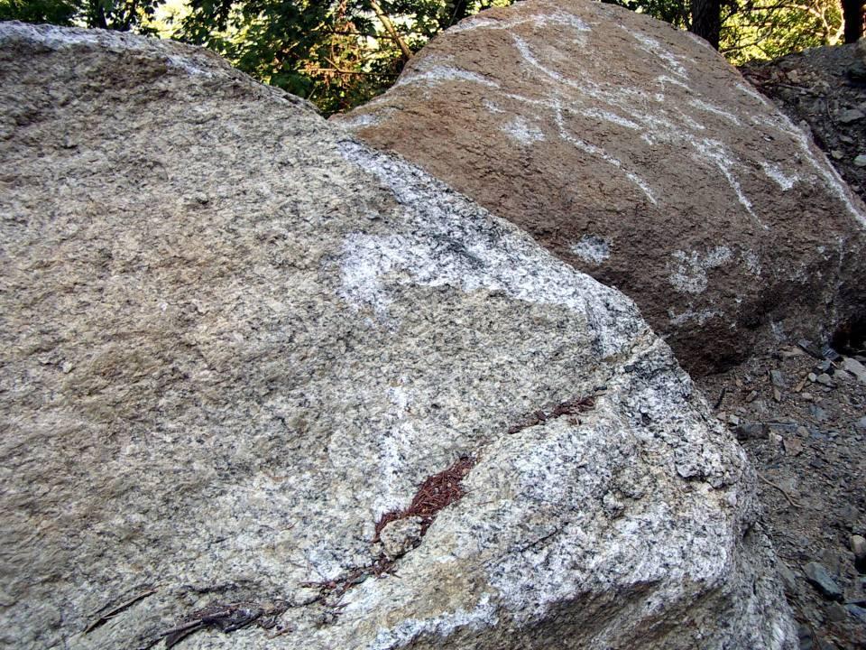 Bloc erratique extrait de la face Nord de tête Noire lors des travaux EDF en 2012-13 : l'aspect granitique de la roche apparaît clairement (cliché août 2012)