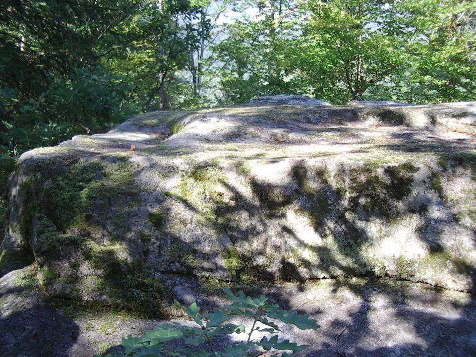 Bloc erratique sur les Gures, pierre dite « du sacrifice » (cliché Bernard Théry)
