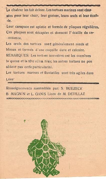 Journal scolaire de Passy, « Face au Mont-Blanc », p. 5 Les tortues, renseignements rassemblés par Serge Buezeck, B. Magnin et L. Ganis, linos de M. Devillaz