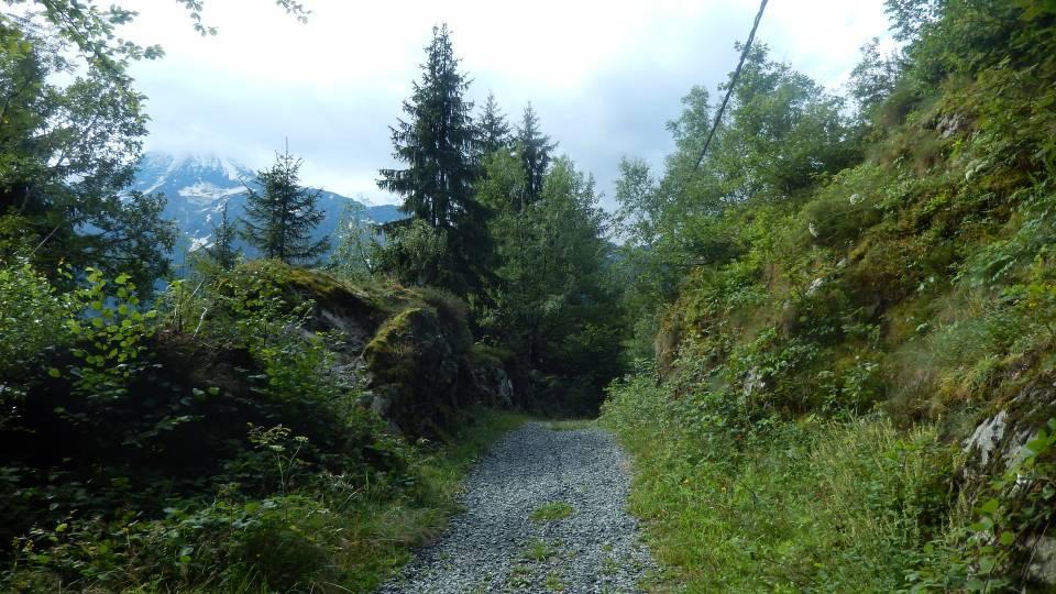 L'actuel « Chemin des Diligences », à l'arrivée aux Chavants (cliché Bernard Théry)