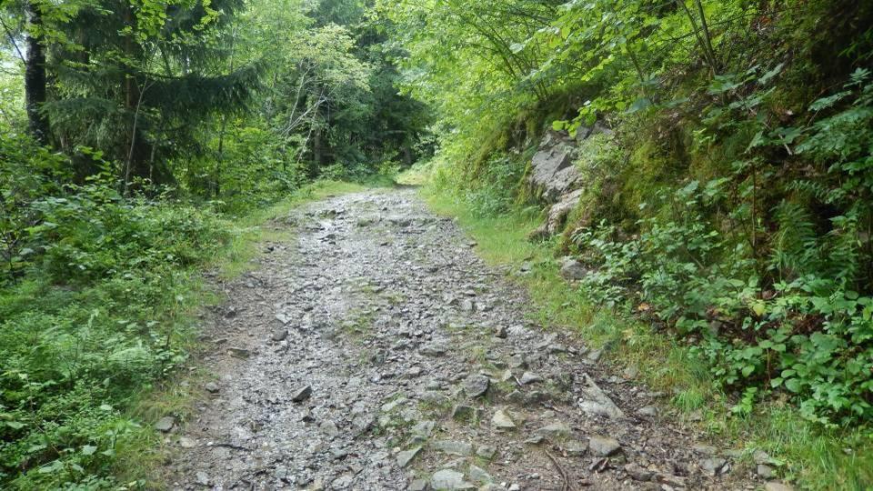 Le Chemin des Diligences aux Houches, une « route dallée d'un cailloutis de roches » ; seuls de petits chars-à-bancs démontables pouvaient y circuler (cliché Bernard Théry, 2014)