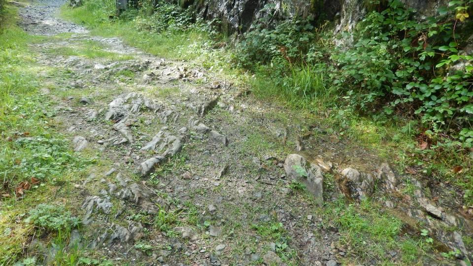 Le Chemin des Diligences aux Houches, « creusé dans le roc vif » (cliché Bernard Théry, 2014)