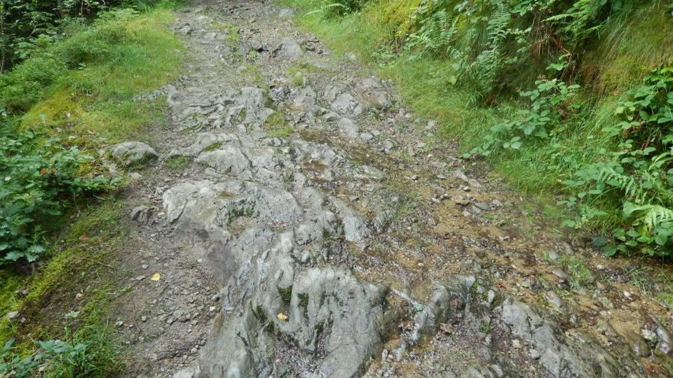 : Le Chemin des Diligences aux Houches, « creusé dans le roc vif » (cliché Bernard Théry, 2014)