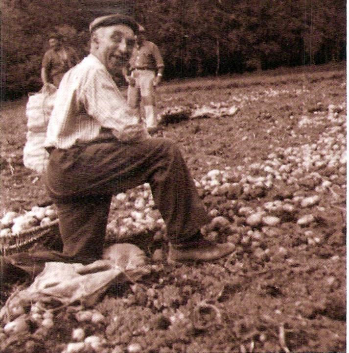 La récolte a été bonne. Séchées sur le champ, les pommes de terre sont ramassées dans des corbeilles d'osier avant d'être versées dans des sacs pour être mises à la cave (Coll. Georges Buttoud ; Traditions et évolution de Passy, Pierre Dupraz, p. 47)