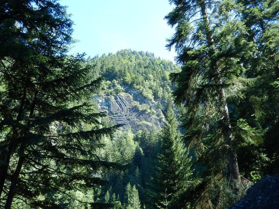Plissement alpin situé sur la rive droite du torrent de Reninge, au-dessus du passage à gué de la piste forestière « Hauteville à Chavan » : vue d'ensemble (cliché Bernard Théry, août 2014)
