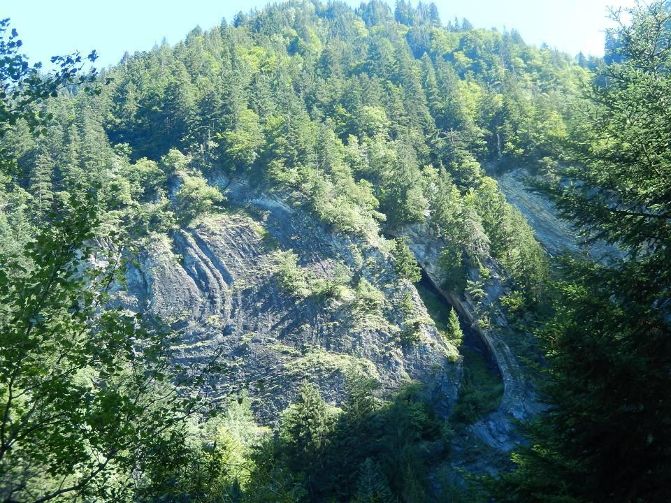 Plissement alpin situé sur la rive droite du torrent de Reninge, au-dessus du passage à gué de la piste forestière « Hauteville à Chavan » (cliché Bernard Théry, août 2014)