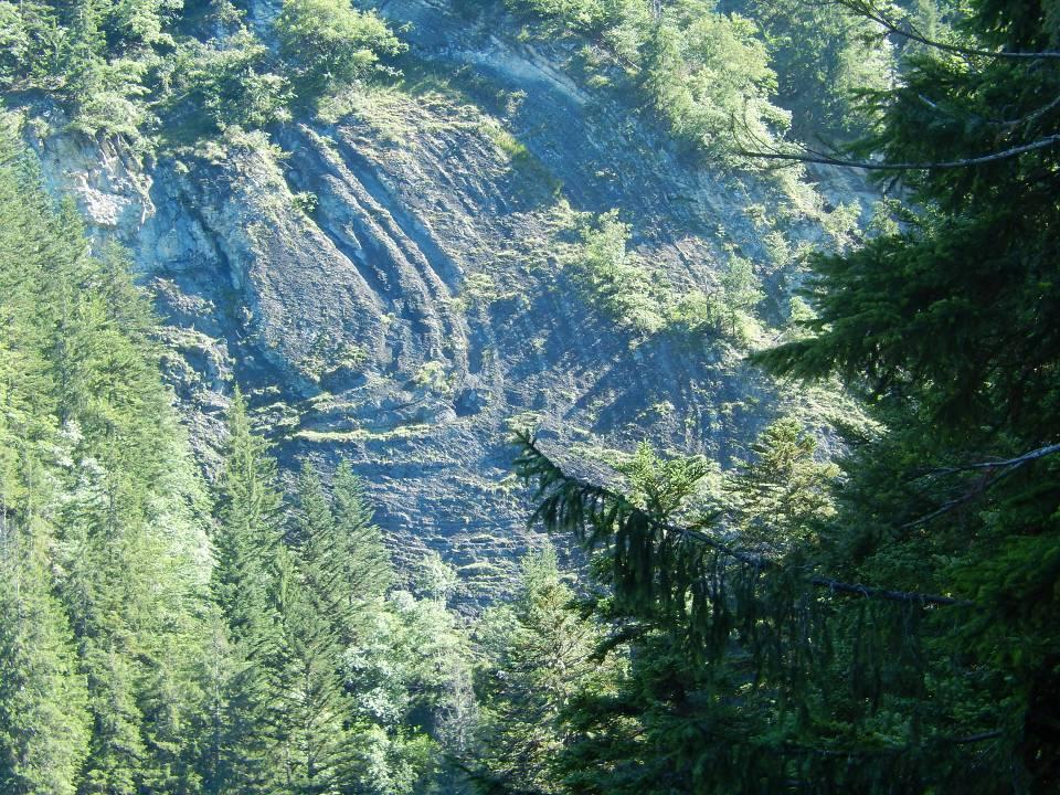 Plissement alpin situé sur la rive droite du torrent de Reninge, au-dessus du passage à gué de la piste forestière « Hauteville à Chavan » : vue rapprochée (cliché Bernard Théry, août 2014)