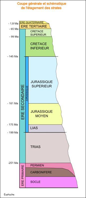 Coupe générale et schématique de l'étagement des strates (source : site cancoillotte)