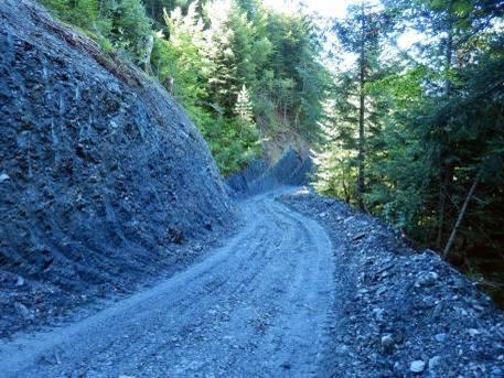 Schistes traversés par le torrent de Reninges, sur la piste forestière tracée durant l'été 2014 de Trappe à Chavan (cliché bernard Théry, août 2014)
