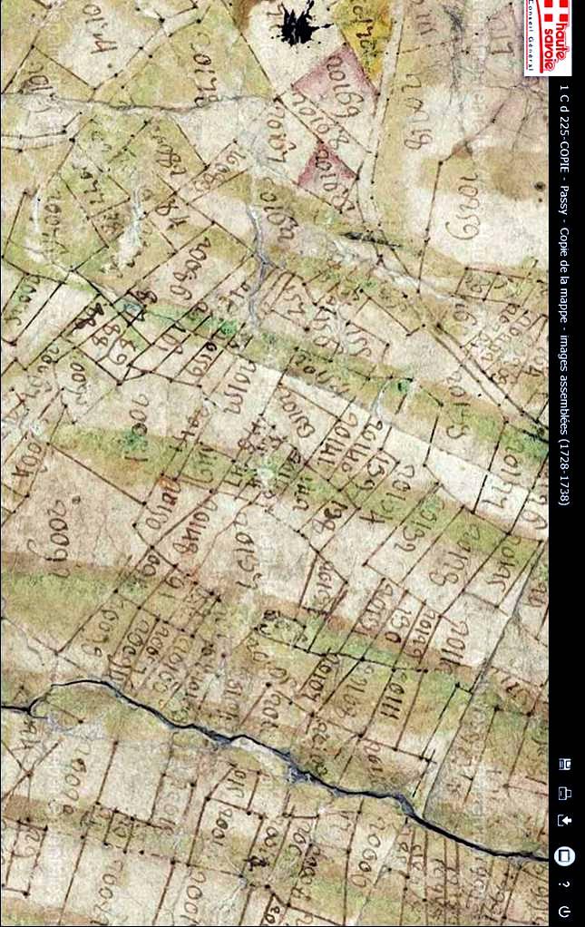 Mappe sarde de Passy, image 3/12, 80%, orientée nord-sud, détail : Vigne entre la Tour Dingy et Le Perrey, en haut, autour de la tache d'encre