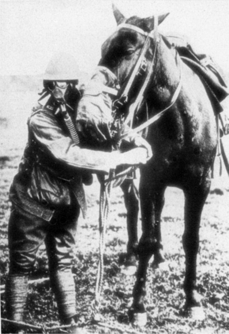 : Un soldat américain présentant son masque à gaz et celui de son cheval (site Wikipedia, art. Cheval durant la Première Guerre mondiale)