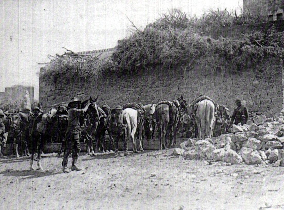 Cavaliers du 4e chasseurs d'Afrique et du 5th Australian Light Horse à Anabta, pris dès le 19 septembre 1918. (site Wikipedia, art. « Histoire de la cavalerie française pendant la Première Guerre mondiale : autres fronts, la Palestine »)