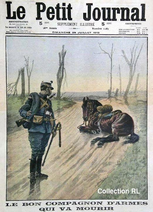 « Le bon compagnon d'armes qui va mourir », Le Petit Journal du 25 juillet 1915 (coll. Rosine Lagier site documentation.equestre, art. le cheval d'armes)
