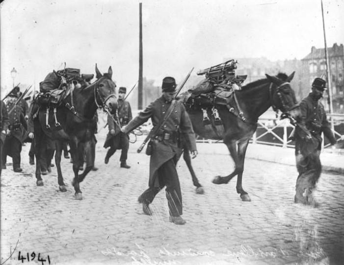 Pièces d'artillerie conduites par des mulets (site gallica BNF)