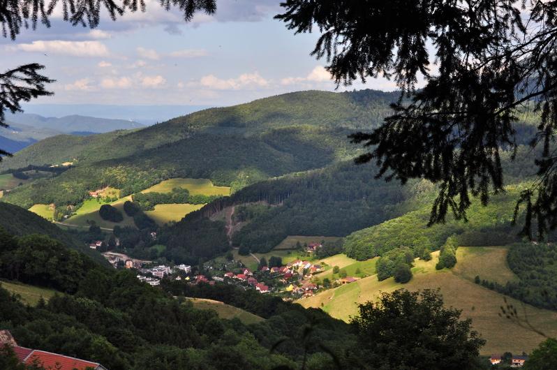 Le col de Sainte-Marie-aux-Mines et la Tête du Violu (site front-vosges-14-18.eu)