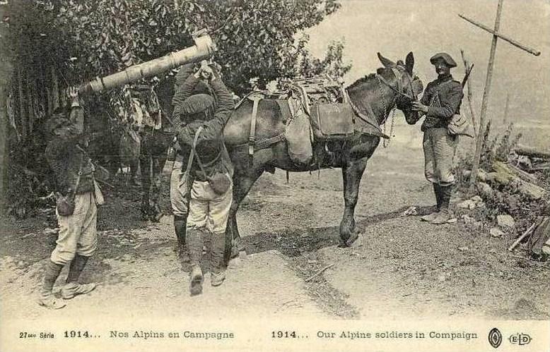 Le chargement d'une pièce de montagne sur un mulet (source : photos de canon de 65 mm dans J'ai Vu n° 40 du 21 Août 1915 (site lagrandeguerre.cultureforum)