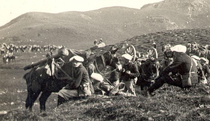 Lors de manœuvres en 1911 à Arêches avec le 22ème BCA, les mulets du 1er régiment d'artillerie de montagne transportent les fardeaux des canons. (site alpins.fr)