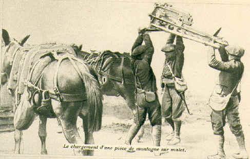 Le chargement d'une pièce de montagne sur un mulet. Source : photos de canon de 65 mm dans J'ai Vu n° 40 du 21 Août 1915, Coll. Mathieu (site mathieuvaldivia Secteur fortifié du Dauphiné)
