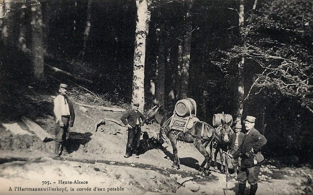 Haute-Alsace, à l'Hartmannswillerkopf, la corvée d'eau potable (site Delcampe)