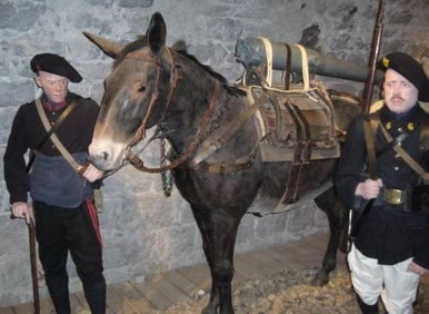 Mulet portant un fût de canon au Musée des troupes de montagne (Site rosalielebel75)