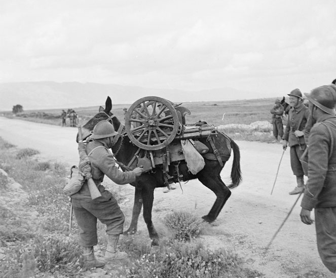 Artilleurs du 67e RA (régiment d'artillerie d'Afrique) en Avril 1943 (site dromabuz)