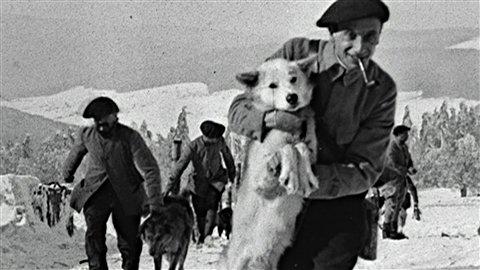 Chasseurs alpins et leurs chiens (site atoute.org)