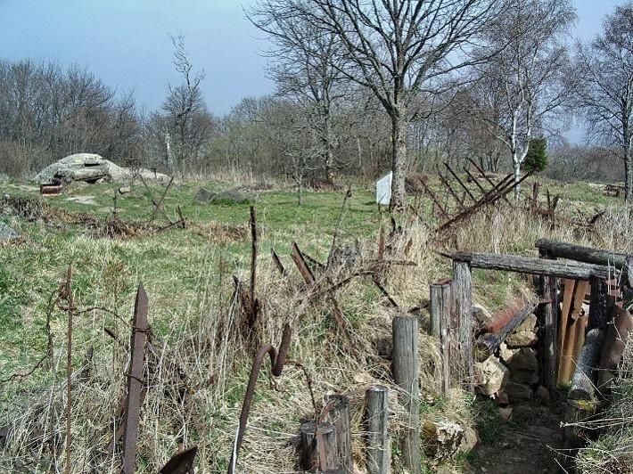 """Cette photo de 2010 illustre la situation entre 1916 et 1918 : au premier plan se situe une tranchée française et, au fond, la """"Feste Dora"""" dans les lignes allemandes. Une vingtaine de mètres à peine les séparent (site Wikipedia, art. bataille du Hartmannswillerkopf)"""