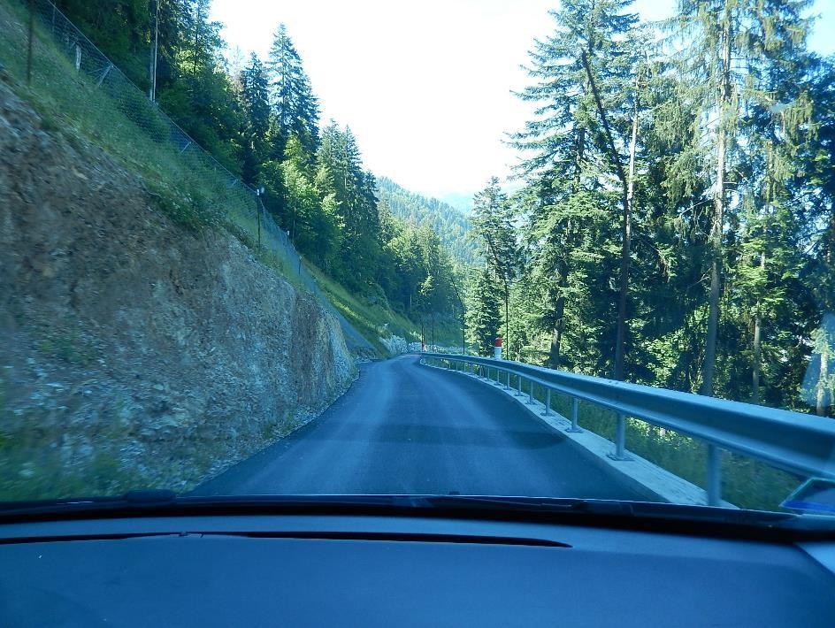 La route forestière, au flanc de Tête Noire (cliché Bernard Théry, 26 juin 2015)