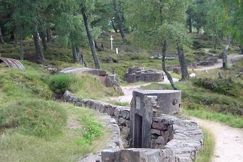 Vestiges de tranchées au Linge (site tourisme-alsace.com : Musée mémorial du linge)