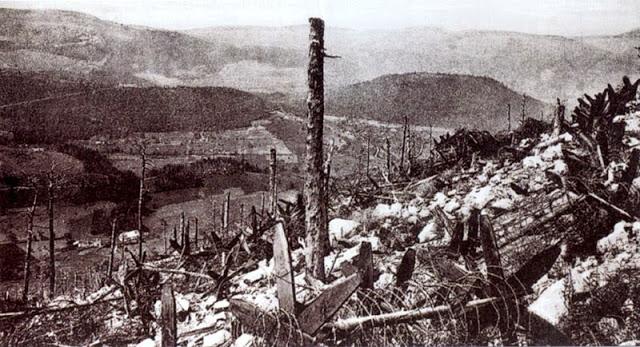 Le Lingekopf en juillet 1915 (site anduze1418.blogspot.fr)