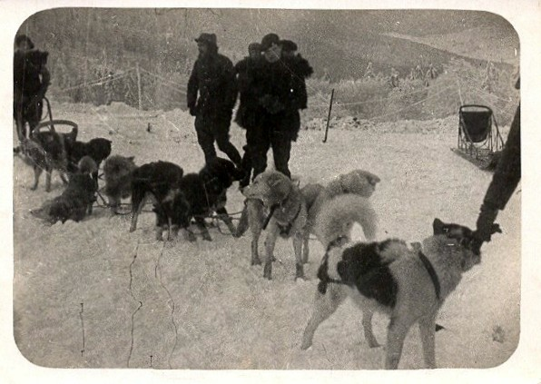Chasseurs alpins et attelages de chiens (site chiensdetraineau.free)