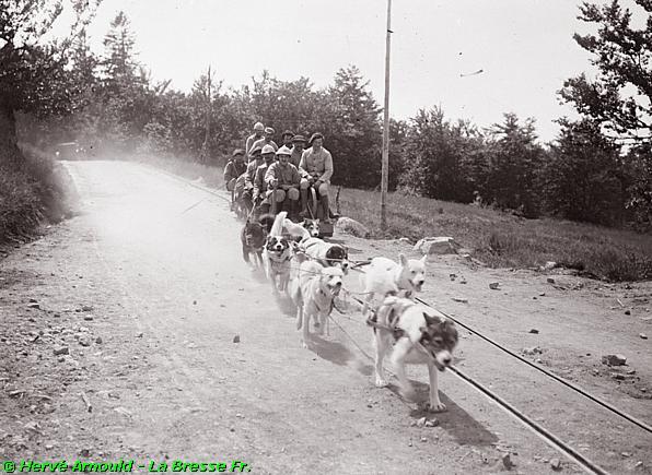 Les chiens de traineau traînent sur les rails des wagonnets (site pierreswesternfront.punt.nl, article route des crêtes)