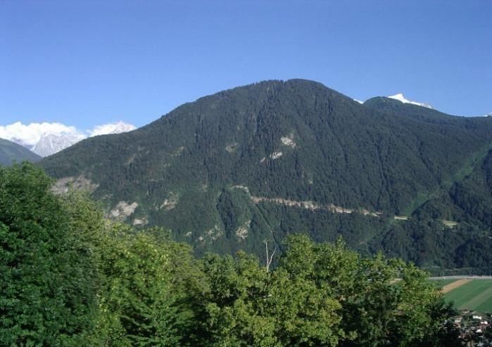 Le massif de Tête Noire et la nouvelle piste forestière EDF de Passy (cliché Bernard Théry, 12 août 2013)