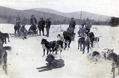 Chasseurs alpins et leurs attelages de chiens de traineau (site resistanceinventerre)