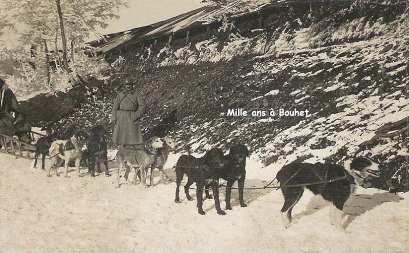 Attelage de chiens de traîneau au 18e régiment du train (site histoiredulab)