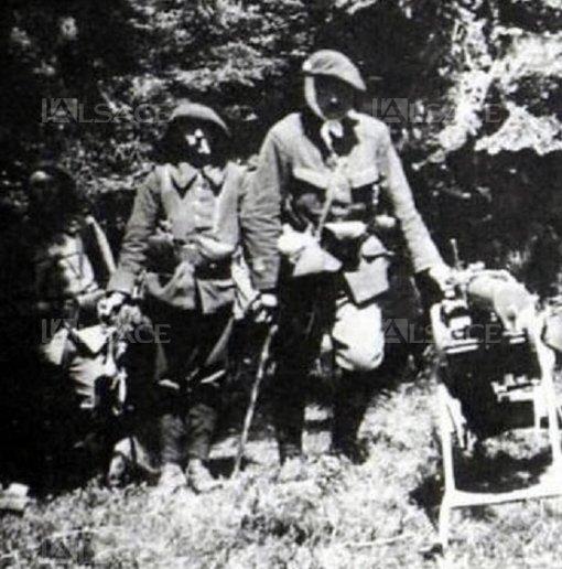 Chasseurs alpins dans les Vosges (site lalsace.fr)