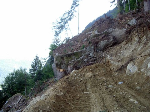 Rencontres… et obstacle sur la piste forestière EDF de Passy, août 2012