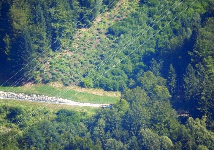 Croisement de la piste forestière EDF et de la tranchée haute tension, Passy, 31 juillet 2014 (cliché Bernard Théry)