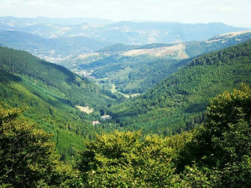 Vallon de Sondernach (site club-vosgien-colmar.fr)