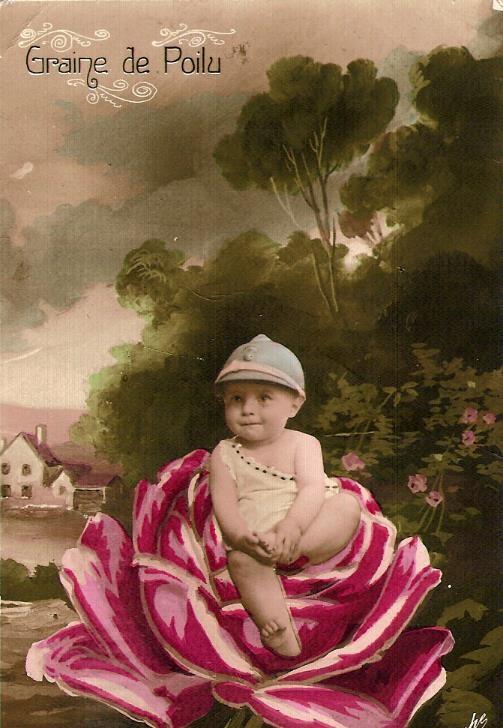 Carte postale « Graine de poilu » envoyée le 22 février 1917 par un copain à Félix Gruz (Doc. famille Devillaz, Passy)